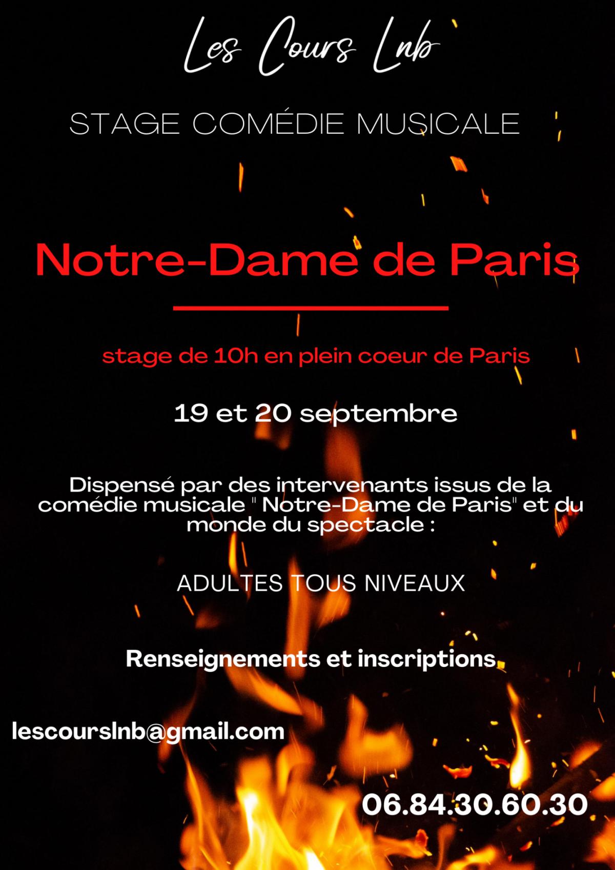 Stage Notre dame de paris
